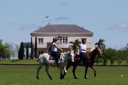 Conviértase en un jugador de polo: Viaje de un día a Puesto Viejo