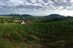 Excursión de un día al vino privado de Somló y del norte de Balaton desde Budapest