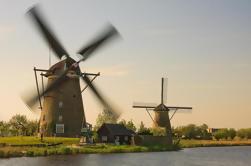 Pequeño viaje en grupo a la UNESCO Patrimonio de la Humanidad Kinderdijk y La Haya incluyendo Mauritshuis de Amsterdam