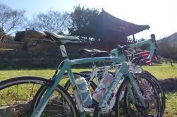 Tour privado en bicicleta de varios días desde Seúl