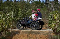 Tour Privado: Passeio de Vinhos e Tapas do Algarve por Sidecar Motocicleta de Portimão