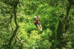 Excursión en Zipline y Kayak desde Santo Domingo