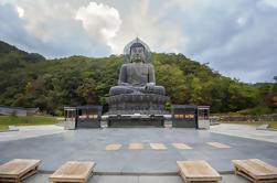 Excursión de 5 días a las ciudades de Corea del Sur desde Seúl