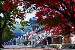 Tour de 3 días de Corea del Este desde Busan a Seúl