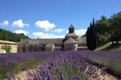 Tour en grupo pequeño de la Provenza Aldeas famosas de las colinas: Fontaine de Vaucluse, Gordes, y Roussillon de Avignon