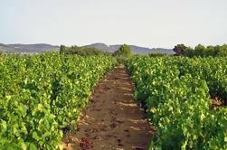 Tour privado de vinos de Provenza con degustaciones desde Marsella