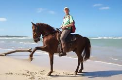 Cabalgatas desde Punta Cana