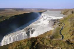 Avistamiento de Ballenas y Tour de Círculos de Oro desde Reykjavik