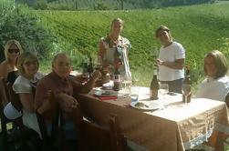 San Gimignano Passeio com Vernaccia Degustação e Almoço de Florença