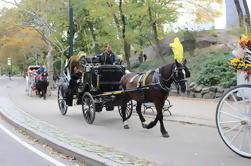 Central Park paseo en carro con el fotógrafo
