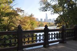 Paseo privado a pie de Central Park