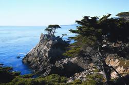 Excursión de un día a Monterey y Carmel por la costa de California