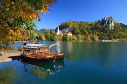 Excursión de un día a la región alpina desde Ljubljana