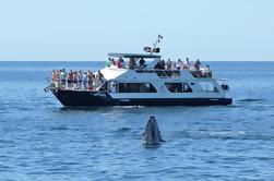 Snorkel Luncheon Cruise en Los Cabos