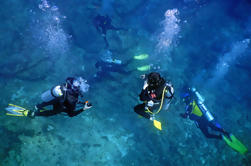 Mar de Cortez Liveaboard Diving Expedition
