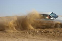 Tour por la ciudad de Dubai y Safari en el desierto