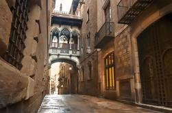 Visita guiada privada del barrio gótico de Barcelona