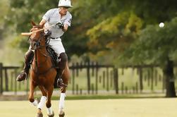 Lecciones de Polo desde Buenos Aires