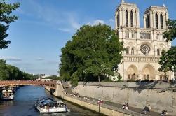 Tour por la ciudad de París y Louvre con audio interactivo