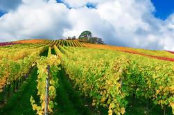 Excursión de un día a Champagne incluyendo Moët y Chandon