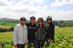 Excursión en bicicleta por la región de Champaña desde París