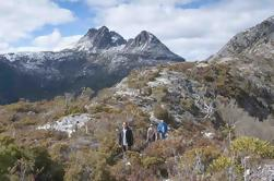 5-Day Tasmania West Coast Camping Tour: Hobart para Launceston Incluindo Mount Field National Park, Tarkine e Cradle Mountain