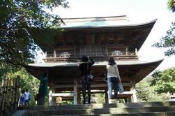 Experiencia Zen en Kamakura desde Tokio
