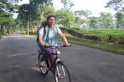 Excursión de 4 días a Srimangal con excursión en bicicleta