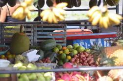 Private Vinh Long y Cai Be Excursión de un día de mercado flotante desde Ho Chi Minh City