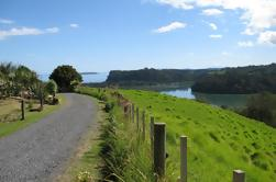 Matakana Coastal Getaway desde Auckland
