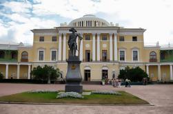 St.Petersburg Skip-The-Line Tour Privado: Residencia Imperial de Pavlovsk