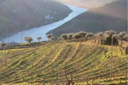Vale do Douro: Visita a Três vinhas com Degustações de Vinhos e Almoço
