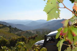 Douro 4x4 Offtrack Adventure desde Porto