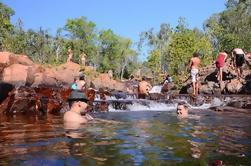 Litchfield y Jumping Crocodiles Excursión de un día completo desde Darwin