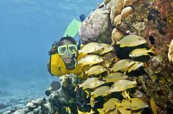 Excursión de Aventura Extrema de Día Completo desde Riviera Maya