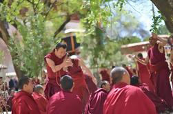Tour de día: Monasterios de Drepung y Sera de Tíbet