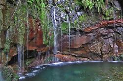 Caminata de Levada de Madeira - lagos y fuentes de Rabacal