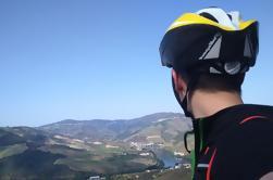 Passeio de 7 Dias pelo Porto do Douro em Porto moderado