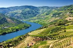 Excursão de degustação de vinhos no Vale do Douro com almoço