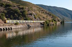 Excursão de um dia de Porto a Régua de comboio e regresso de barco