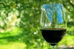 Excursión de un día a Régua con comida, visita y degustación de vinos