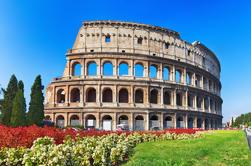Salta la coda: Colosseo, Fori Imperiali, il Palatino e piccoli gruppi Tour