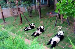 13 jours Grand China avec Pandas Join-in Tour: Pékin, Xian, Chengdu, la Croisière sur le fleuve Yangtze et Shanghai
