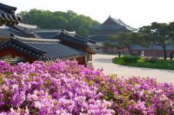 Excursión en Seúl de grupos pequeños por la tarde