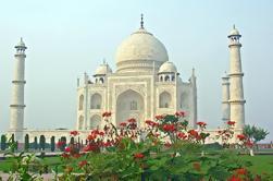 Excursión de 6 días al Golden India