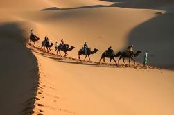 Private 3-Day Desert Tour de Marrakech a Fez
