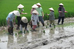 Tour Agrícola en Hoi An