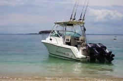 Excursión en barco desde la ciudad de Panamá