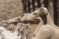 9 noches de arenas de pequeños grupos y paseo marítimo desde El Cairo