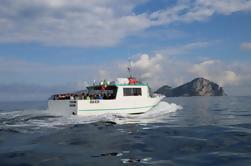 Capri nadar y diversión de medio día en barco de Sorrento